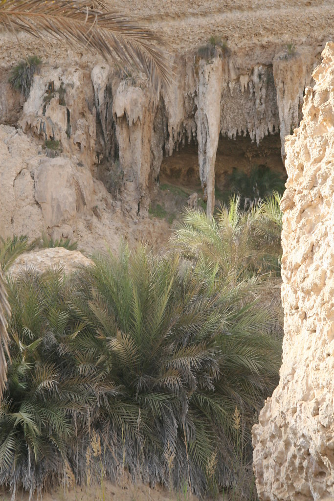Wadi Shuwaymiyyah