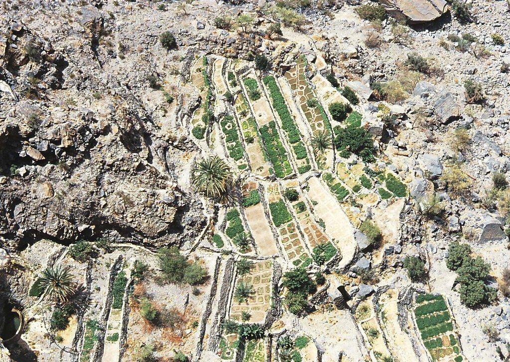 Djabal Akhdar Luftaufnahme Faladsch / Jebel Akhdar Falaj